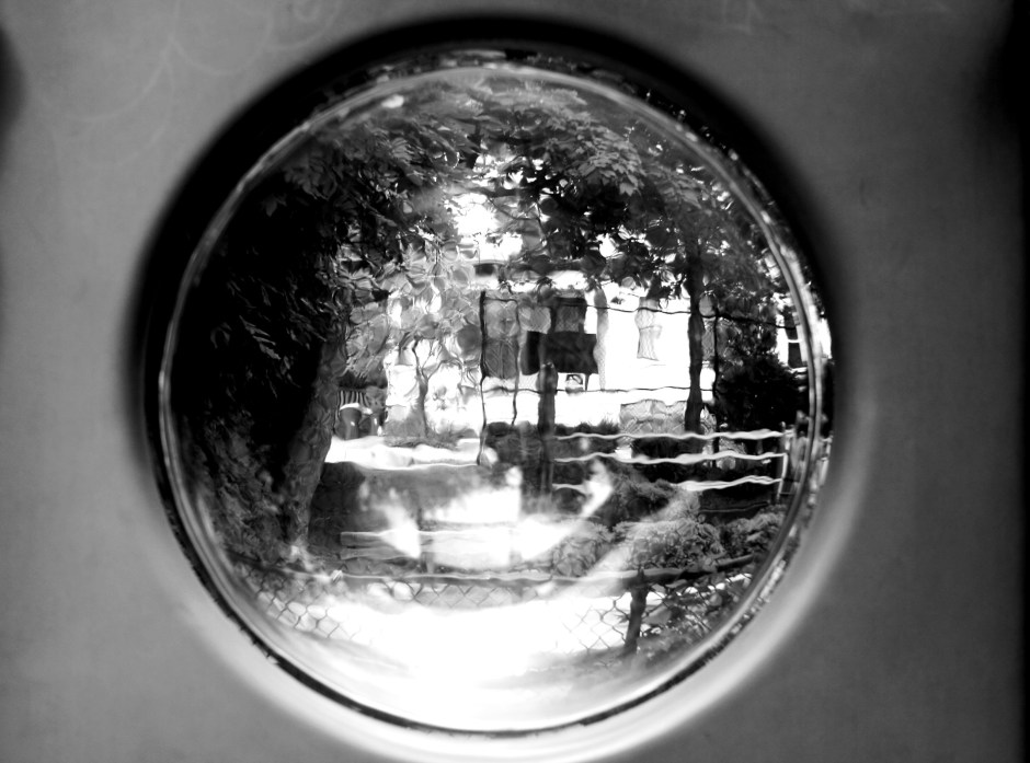 """""""Looking Glass at Murphy Park"""" © Edward S. Gault"""